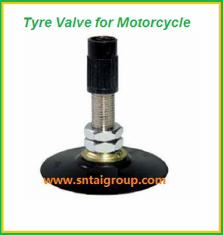 Motorcycle Tire Valve  1
