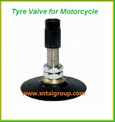 Motorcycle Tire Valve