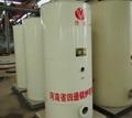 LSS型立式燃油(气)蒸汽锅炉 2