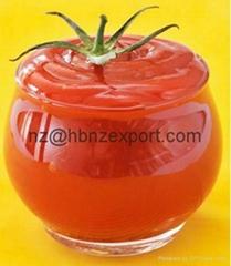 Bulk Tomato Paste in Drum