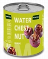 Canned Water Chestnut in Brine