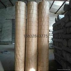 冷镀锌电焊网五厘米网孔