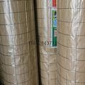 冷镀锌电焊网五厘米网孔 2