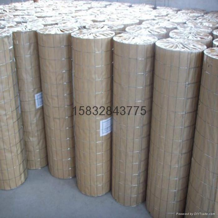 冷镀锌电焊网五厘米网孔 3