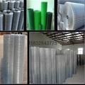 3/4热镀锌电焊网 4