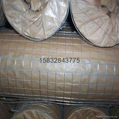 3/4热镀锌电焊网