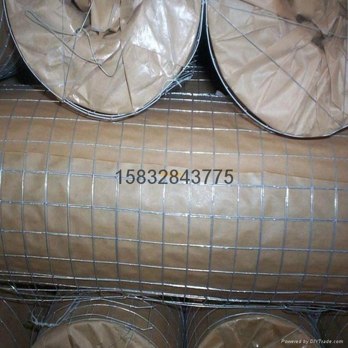 二点五厘米网孔镀锌电焊网 2