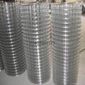 二点五厘米网孔镀锌电焊网 3