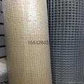 1/4镀锌电焊网 4