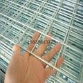 镀锌电焊网片 4
