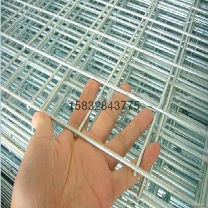 镀锌电焊网片 2