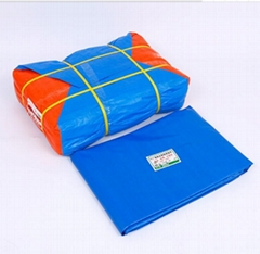 廠家定製加工汽車篷布pvc塗塑篷布