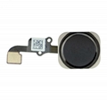 iPhone 6 Home Button Assembly - Black