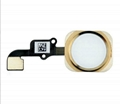 iPhone 6 Home Button Assembly - Gold