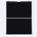 iPad Air  LCD Display