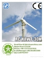 Richuan 300w -200kw electric generating
