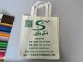 清遠無紡布袋定製 清遠無紡布袋廠家 清遠環保袋生產廠家背帶環保袋 3
