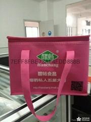 佛山廣州中山深圳江門保溫袋定製 環保袋生產廠家