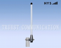 0.3M 2.4G&5.8G DUAL BAND FIBER GLASS ANTENNA CQJ-GB-6/8-2400/5800 (Hot Product - 1*)