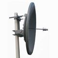 Wimax Dish Antenna