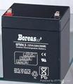 ups电源蓄电池 1