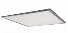 Super Thin High Brightness Two Sides Lighting Smd3014 Simple Design LED Panel Li