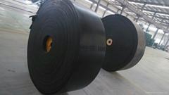 high-tenacity conveyor belt
