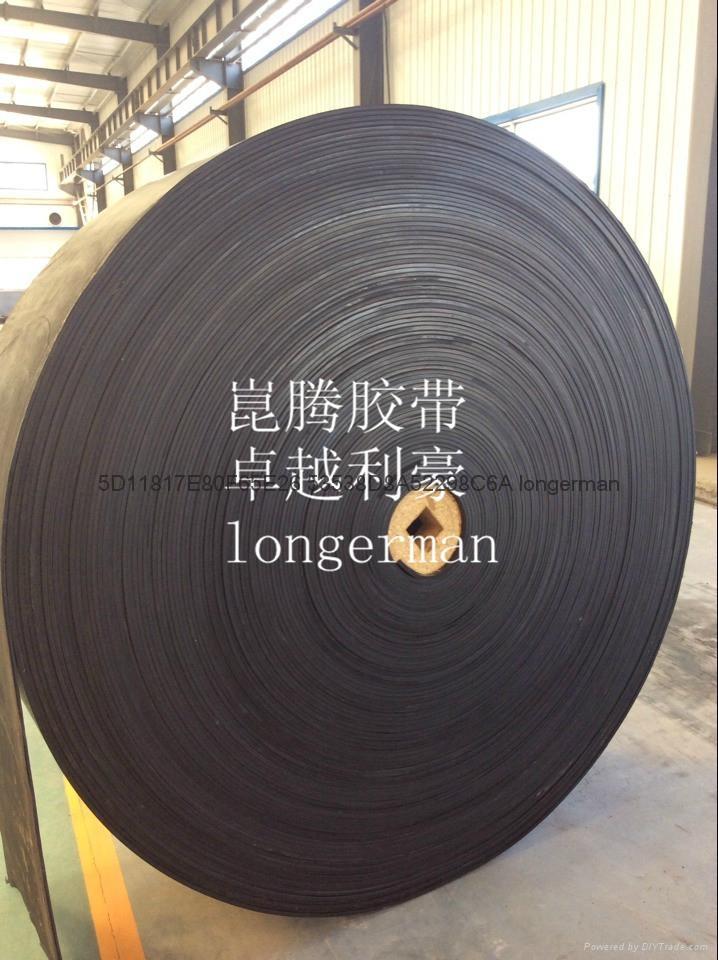 High-tenacity conveyor belts 4