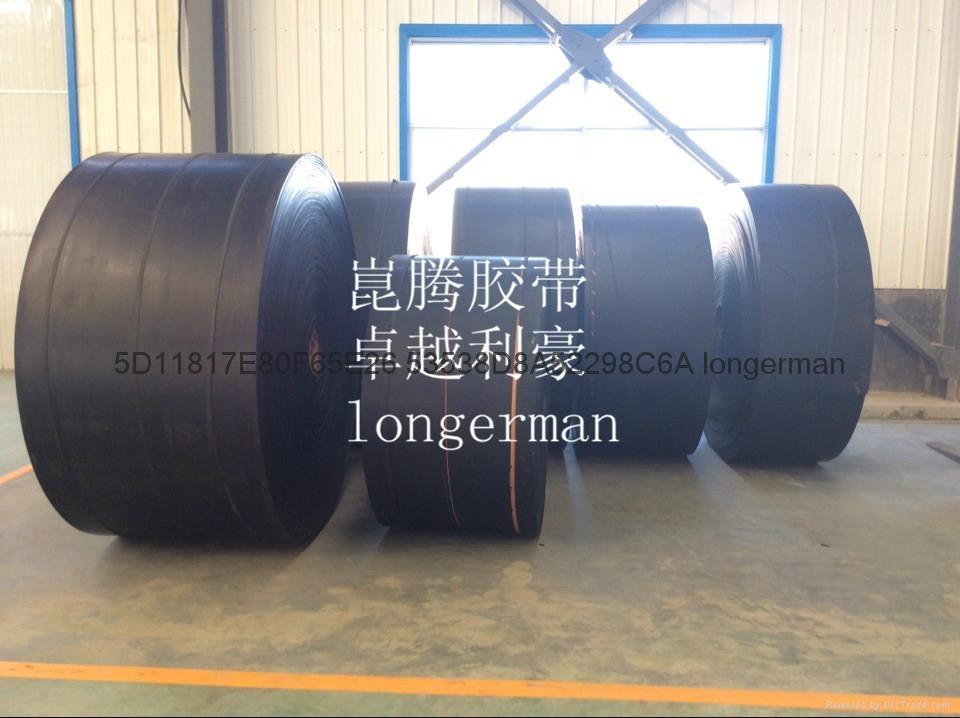 longerman conveyor belt 3