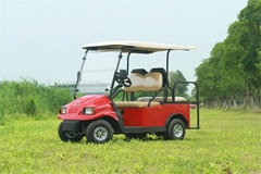 Falcon Brand All Aluminum Electric Utility Vehicle(R4BTB)