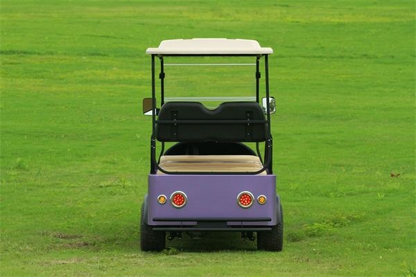 Falcon nd Golf Cart with Solar – Eagle Runabout(M6) (China ... on cyclone golf cart, rc golf cart, roadster golf cart, baja golf cart, toro golf cart, hornet golf cart, bombardier golf cart, batman golf cart, gamecock golf cart, rat rod golf cart, bronco golf cart, rocket golf cart, f-22 golf cart, trike golf cart, flamingo golf cart, villager golf cart, solorider golf cart, mustang gt golf cart, beast golf cart, raptor golf cart,