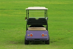 Falcon brand Golf Cart with Solar – Eagle Runabout(M6)