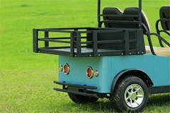 Falcon  Brand 4 Passenger with luggage space electric golf cart(M4SB3)