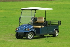 Falcon brand electric golf cart 2 seat with l   age space with AC motor