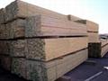 进口木材 1