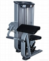 Bicep Curl machine/Arm curl machine-Gym equipment/Inotec fitness/Torque fitness 10