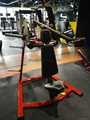 DPL0550 Shoulder Press