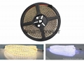 dimmable light 3527 LED Strips 600SMD 5M