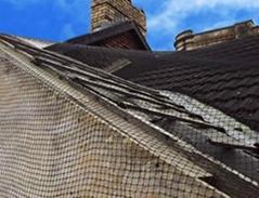 Nylon Bird Netting - Humane Way to Exclude Birds