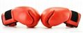 Leather Boxing Gloves 2