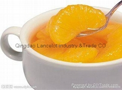 canned mandarin orange in syrup in china