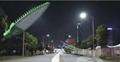 30W LED Street Lights Road Lamp waterproof Leafs led outdoor light garden lights