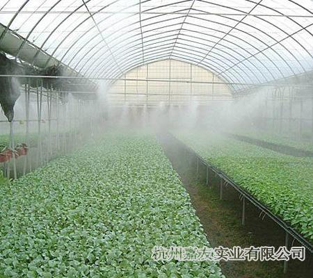 蔬菜大棚加濕器 1