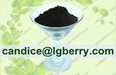 Factory supply organic black currant extract