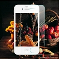 Color screen protector for iPhone 4 3