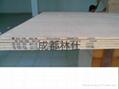 手持木质板材喷码机 2