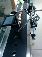 成都林仕鸡蛋高清晰喷码机