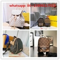 palm springs mini LV mongram bags backpack