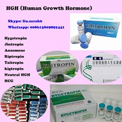 HGH (Human Growth Hormone) High Purity Good Blood Result Kigtropin/Jintropin/Hyg (Hot Product - 1*)