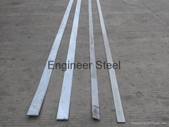 China Good Quality Professional Iron Flat Bar